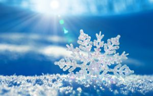 snowflake_sun_300x188